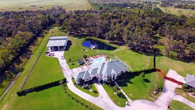 Dickinson Single Family Home For Sale: 7218 S Oak Avenue