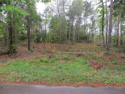 Conroe Residential Lots & Land For Sale: Twin Lakes Circle