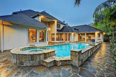 Houston Single Family Home For Sale: 2518 Deep Oak Court