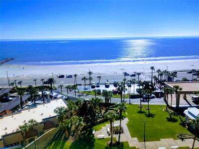 Galveston Mid/High-Rise For Sale: 5220 Seawall Boulevard #1237B