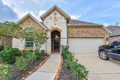 Missouri City Single Family Home For Sale: 2743 Parker Oak Pass