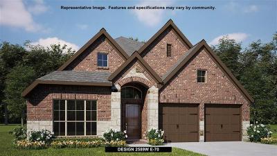 Rosenberg Single Family Home For Sale: 1323 Mystic River Lane