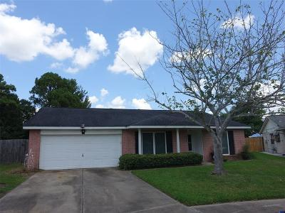 Friendswood Single Family Home For Sale: 16403 Bougainvilla Lane