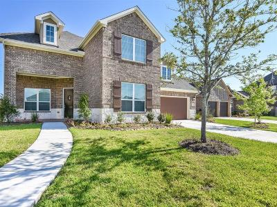 Pearland Single Family Home For Sale: 7308 Lake View Terrace Drive