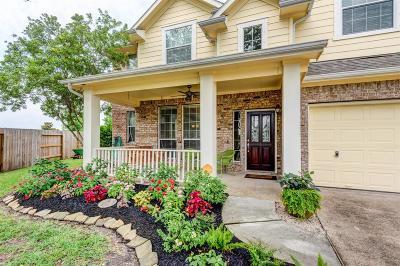 League City Single Family Home For Sale: 929 Boxelder Pointe