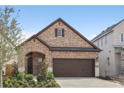 Katy Single Family Home For Sale: 27011 Brighton Valley Way