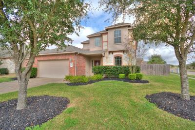 Pearland Single Family Home For Sale: 12801 Winter Springs Drive