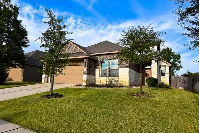 Tomball Single Family Home For Sale: 21106 Magic Spell Drive