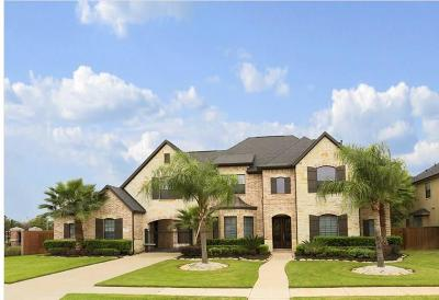 Pearland Single Family Home For Sale: 2506 Baywater Canyon Drive
