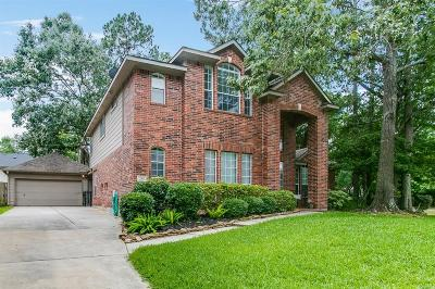 Houston Single Family Home For Sale: 2911 Heather Lake Court