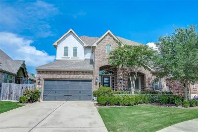 Sugar Land Single Family Home For Sale: 2123 Cobblerstone Court