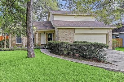 Houston Single Family Home For Sale: 807 Timor Lane