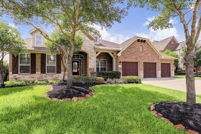 Tomball Single Family Home For Sale: 17611 Strackfield Lane