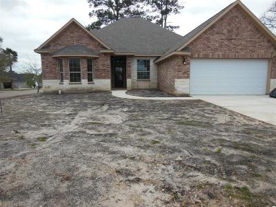 Montgomery Single Family Home For Sale: 17441 Shadywater Drive