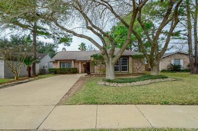 Houston Single Family Home For Sale: 9527 Round Up Lane