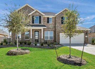 Rosenberg Single Family Home For Sale: 515 Round Lake Drive