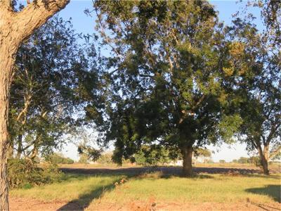 Farm & Ranch For Sale: 0000 Fm 1162