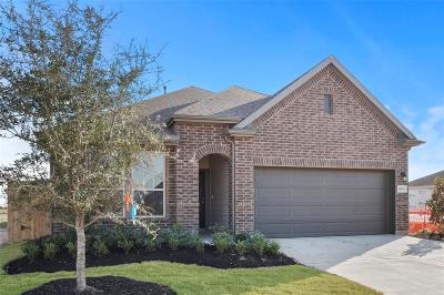 Fulshear Single Family Home For Sale: 30819 Lake Spur Manor Drive