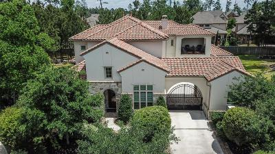Tomball Single Family Home For Sale: 3 Star Iris Place