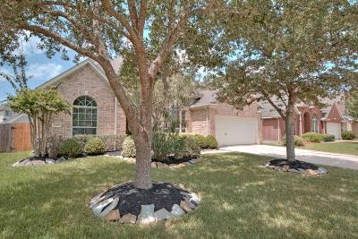 Pearland Single Family Home For Sale: 2208 Signal Hill Drive