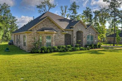 Single Family Home For Sale: 17802 Country Grove