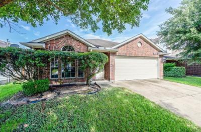 Houston Single Family Home For Sale: 12806 Blue Cromis Lane