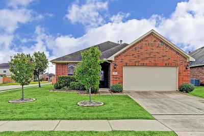 Tomball Single Family Home For Sale: 8619 Sunny Gallop Drive