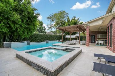 Katy Single Family Home For Sale: 1902 Hollow Wind Drive