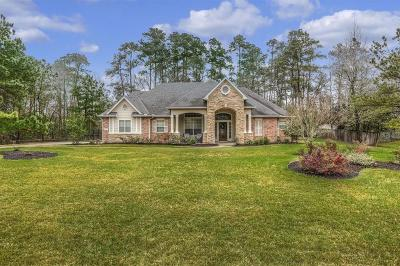 Conroe Single Family Home For Sale: 8977 Willow Springs Lane