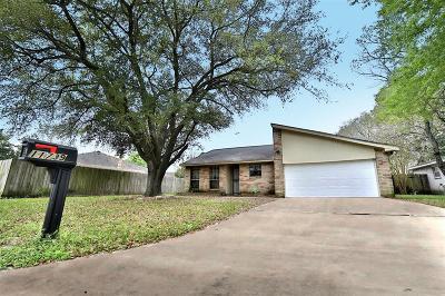 Houston Single Family Home For Sale: 11739 Birch Run Lane