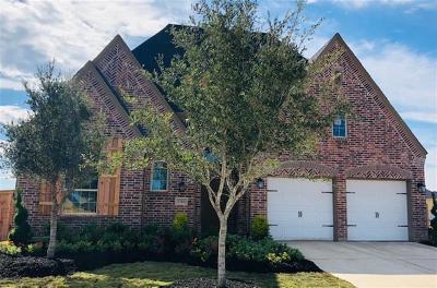 Fulshear Single Family Home For Sale: 3703 Lake Falls Drive