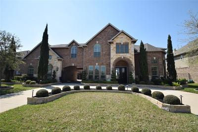 Fort Bend County Single Family Home For Sale: 27102 Wooded Canyon Drive