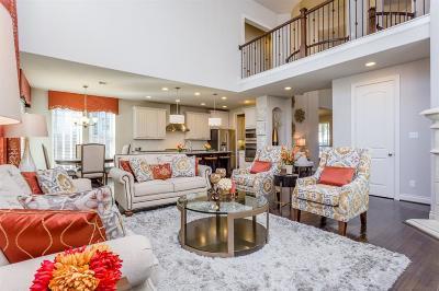 Houston Single Family Home For Sale: 6629 Wharton Street