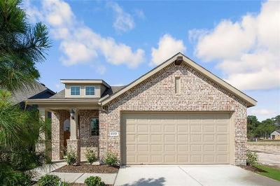 New Caney Single Family Home For Sale: 16315 Little Pine Creek