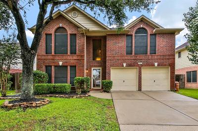 Friendswood Single Family Home For Sale: 17011 Hidden Treasure Circle