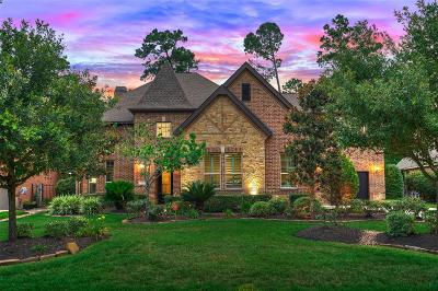 Conroe, Spring, The Woodlands Single Family Home For Sale: 59 Player Vista Place