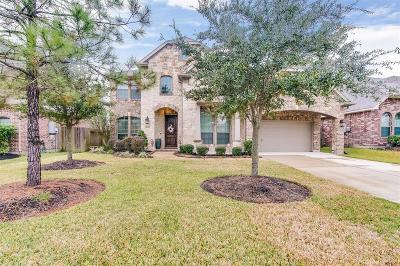 Houston Single Family Home For Sale: 14507 Arbor Ivy Lane