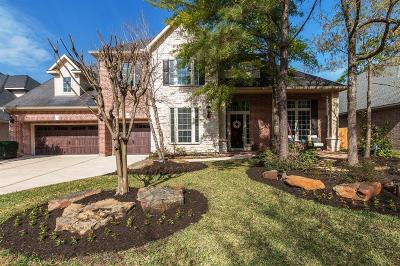 The Woodlands Single Family Home For Sale: 30 Shawnee Ridge Drive