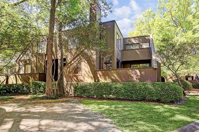 Houston Condo/Townhouse For Sale: 212 Litchfield Lane
