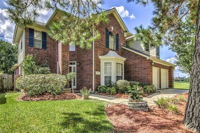 Houston Single Family Home For Sale: 3002 Prairie Knoll Court