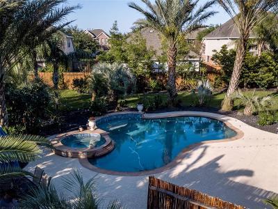 League City Single Family Home For Sale: 602 Boxelder Pointe Court