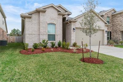 Houston Single Family Home For Sale: 6115 Carpenters Cove Lane
