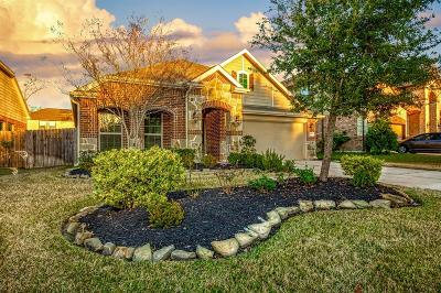 New Caney Single Family Home For Sale: 18757 Kelly Meadows Lane