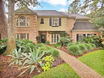 Houston Single Family Home For Sale: 15111 Benfer Road