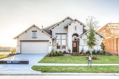 Tomball Single Family Home For Sale: 21623 Albertine Drive