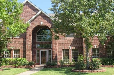 Friendswood Single Family Home For Sale: 1209 Hawkhill Drive