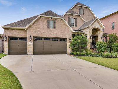 Meyerland Single Family Home For Sale: 4907 Dumfries