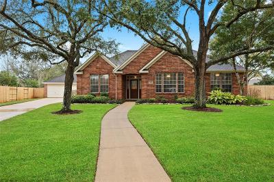 Friendswood Single Family Home For Sale: 1716 Brill Drive