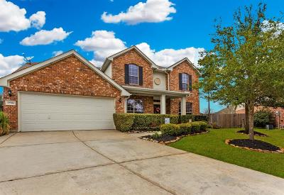 Tomball Single Family Home For Sale: 12506 Valley Cliff Court
