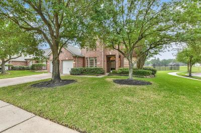 Houston Single Family Home For Sale: 11402 Bogan Flats Drive